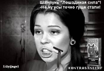 http://kontrasti.ucoz.ru/_fr/3/6770216.jpg
